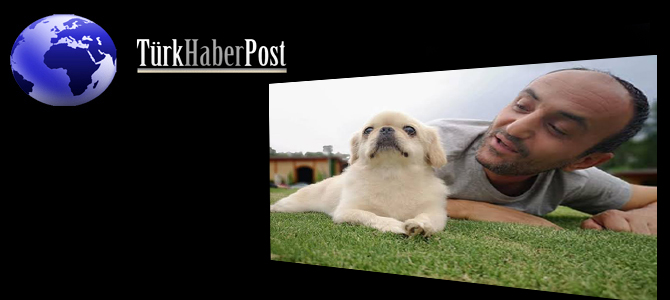Ersin'in Yeni Köpeği
